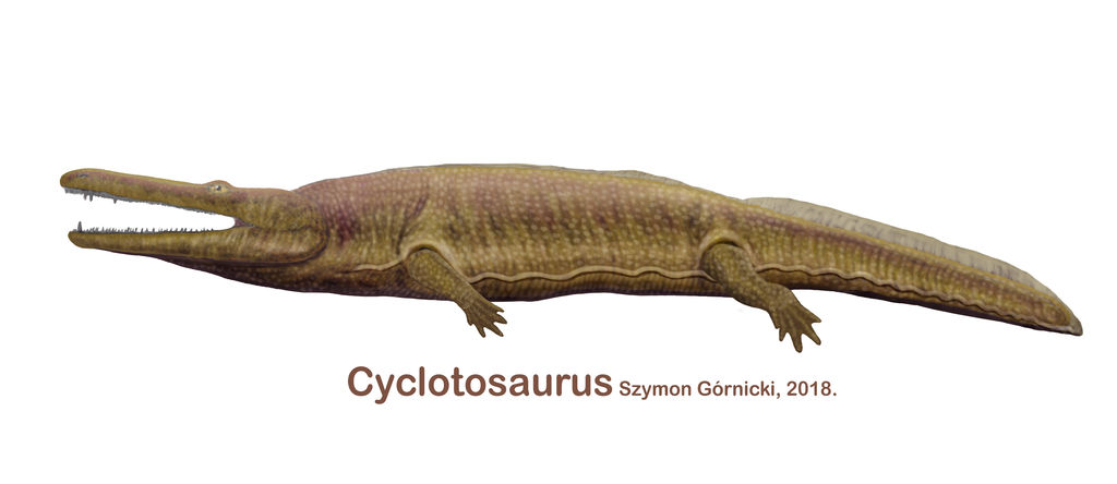 cyclotosaurus_by_szymoonio_dc7e2hu-fullview
