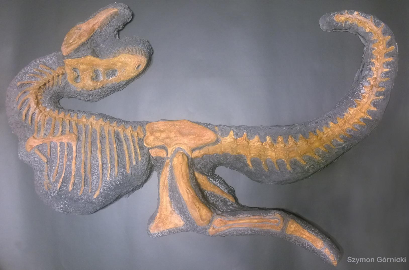 Tarbosaurus model 1-10.